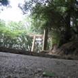 naoshima 3